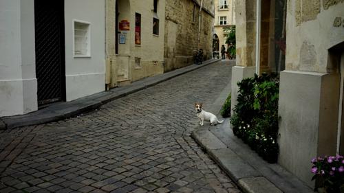 Shoka: Paris