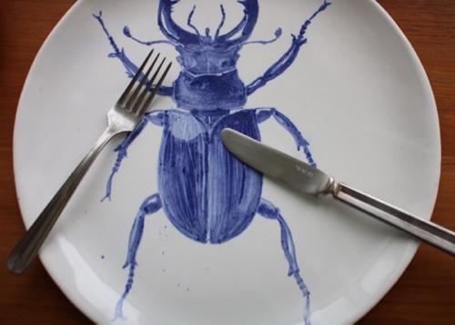 マグダ ウェルドン SWITCH 昆虫