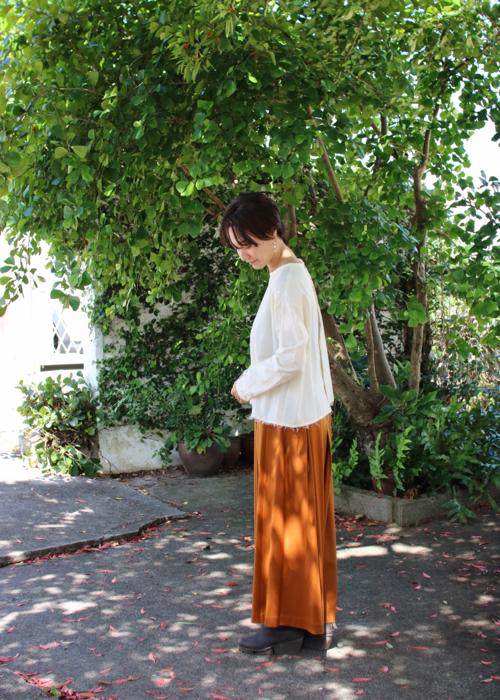 plain blouse